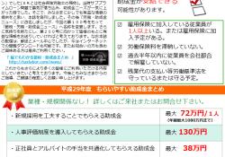 節税・労務・助成金ニュース 平成29年5月No100(29年度助成金)