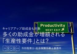 生産性要件とは